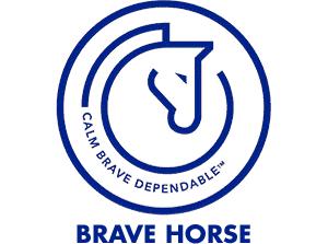 Transitions Treats | Equine CBD Oils & Kits | Horse Edibles